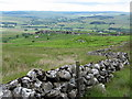 NY7882 : Boundary wall south of Howlerhirst Crags by Andrew Curtis