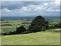 SE4598 : Field north of Chapel Wood Farm : Week 26