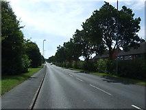 SJ9146 : Dividy Road (A5272)  by JThomas