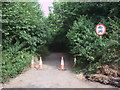 ST7444 : Disused road, near Nunney Catch by Vieve Forward