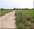 TG1420 : View along the former perimeter track of RAF Swannington by Evelyn Simak