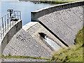 SN8193 : Llyn Cwm-byr dam : Week 29