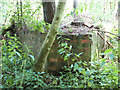 TG1620 : Remains of the old sewage works by Evelyn Simak