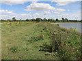 TL2571 : Godmanchester Nature Reserve by Hugh Venables