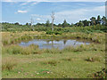 SU9253 : Pond, Ash ranges by Alan Hunt