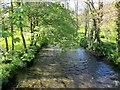 SX3170 : River Lynher at Kerney Bridge by Derek Harper