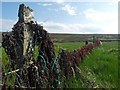 HY3706 : Fence behind Waulkmill Bay, Orkney by Claire Pegrum