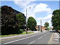 SP0585 : Harborne Road, Edgbaston by Chris Whippet