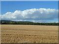 SU8107 : Stubble field by Robin Webster