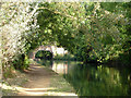 TQ1278 : Bridge 202, Grand Union Canal by Robin Webster