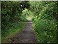 SU8672 : Hazelwood Lane by Alan Hunt