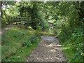 SU8674 : The ford near Westley Mill by Alan Hunt