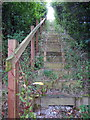 SJ3660 : The Wooden Steps to Nowhere by Jeff Buck