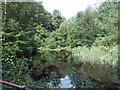 SE0631 : Settling Pool on feed to Ogden Reservoir by Michael Steele