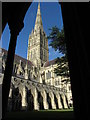 SU1429 : Salisbury Cathedral : Week 34