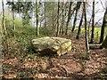 SO7589 : Granite erratic, Dudmaston by Richard Webb