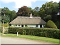 TF3672 : Thatched Cottage near Bag Enderby by Ian S
