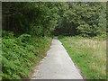 SU8450 : MOD training area near Aldershot by Alan Hunt