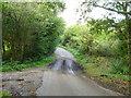SP9201 : A damp dip on Little Hundridge Lane by Robin Webster