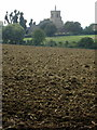 TL0953 : Field by the bridleway with Renhold church beyond by Philip Jeffrey