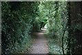 SU9084 : The Thames Path by N Chadwick