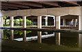 SJ7993 : Bridgewater Canal by Peter McDermott