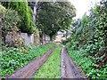 SE3911 : Lidgate Lane by Alex McGregor