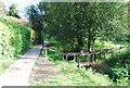 TQ1630 : Footpath by the River Arun by N Chadwick