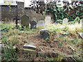 TQ2577 : Brompton Cemetery by Thomas Nugent