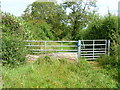 SP2218 : Bridleway to byway by Michael Dibb
