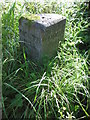 SX2774 : Parish Boundary Stone by Ken Ripper