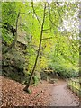 ST6376 : Path by the Frome by Derek Harper