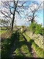 SE0325 : Sowerby Bridge Bridleway 27 near Ellen Royd Farm by Humphrey Bolton