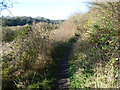 TQ4260 : Footpath above the West Kent Golf Course by Marathon