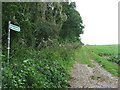 TL5945 : Bridleway And Hedge by Keith Evans