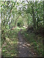 TL6046 : Part Of The Harcamlow Way by Keith Evans