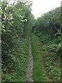 TL5747 : Footpath by Keith Evans