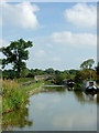 SJ8458 : Macclesfield Canal north-east of Scholar Green, Cheshire by Roger  Kidd