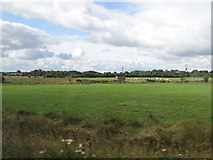 M7272 : Hut and cattle by Ian Paterson