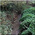 ST8963 : South Brook towards the Avon, Melksham by Jaggery