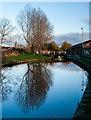 SJ8997 : Ashton Canal : Week 48