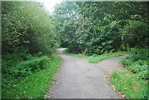 SE3156 : Cycle Route 67 by N Chadwick