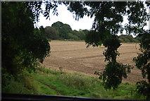 SE3157 : Farmland by the old railway line by N Chadwick