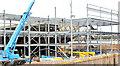 J3272 : The new Railway Stand, Windsor Park, Belfast - December 2014(3) by Albert Bridge