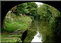 SJ9065 : Macclesfield Canal west of Bosley, Cheshire by Roger  Kidd