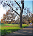 TQ3571 : Mayow Park (3) by Stephen Richards