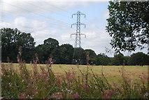 SE3057 : Pylon, Willow Wood by N Chadwick
