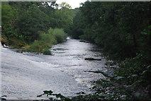 SE3158 : River Nidd below Scotton Mill Weir by N Chadwick