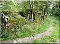S4328 : Ruined farmhouse at Bregaun by Humphrey Bolton