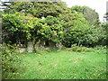 S4328 : Ruined farm at Bregaun by Humphrey Bolton